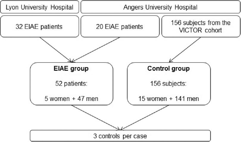 Figure 1: Study population. Fifty-two patients with surgically proven exercise-induced arterial endofibrosis were selected at the Angers and Lyon University Hospitals. Control cases were selected among asymptomatic athletes of the VICTOR cohort managed at the Angers University Hospital. Three gender- and age-matched control subjects were paired to each exercise-induced arterial endofibrosis patients, constituting a total of 208 participants